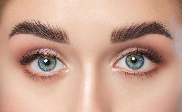 How long do eyebrows take to fully grow back? - Up On Beauty
